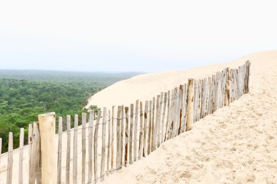 Découvrez la magnifique dune du pilat