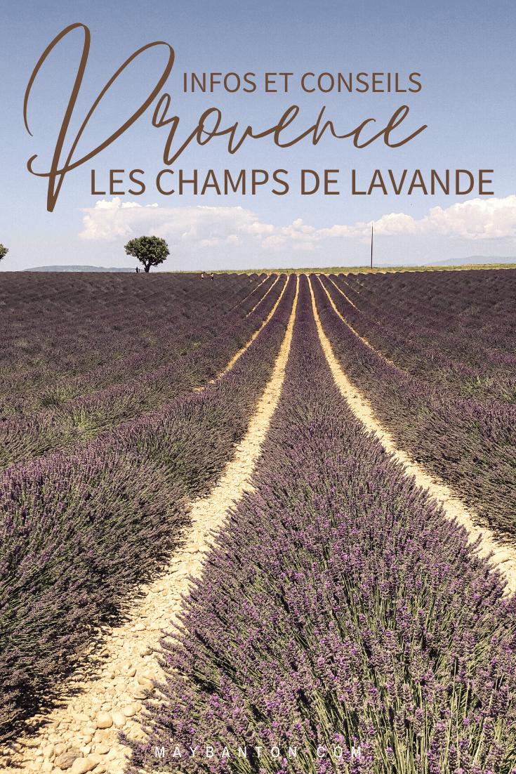La Provence est une région riche en paysage à couper le souffle. Dans cet article je t'indique où et quand découvrir les célèbre champs de lavande.