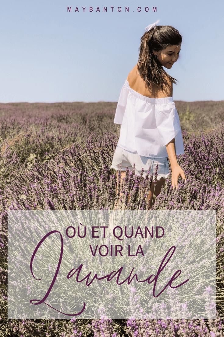 La lavande est aussi belle qu'éphémère, dans cet article je t'indique où et quand voir les plus beaux champs de lavande en Provence.
