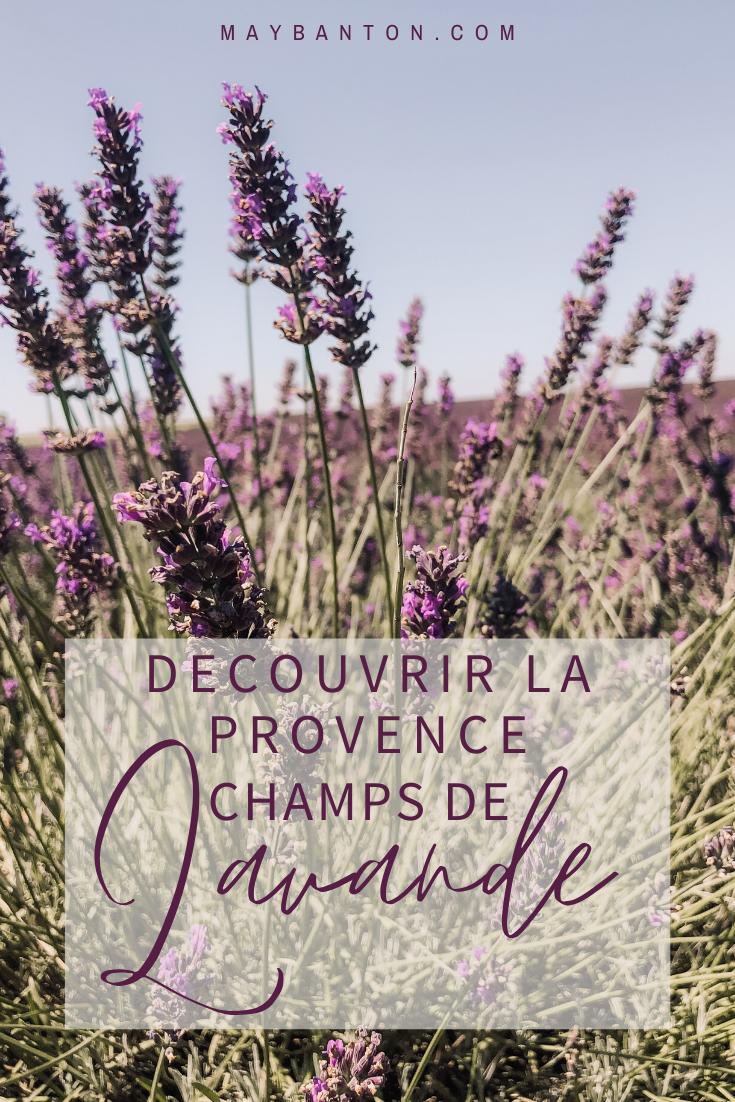 Dans ce post je te dis tout ce que tu dois savoir pour découvrir les champs de lavande en Provence: la meilleure exploration, la période pour y aller etc...