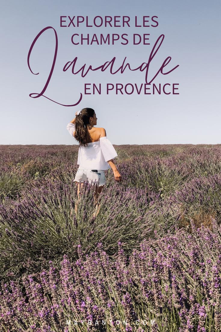 Les beaux champs de lavande parfumés sont très éphémères et certaines exploitations sont plus belles que d'autres. Dans ce post je t'indique tout ce que tu dois savoir pour découvrir les champs de lavande en Provence.